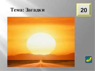 Тема: Загадки 20 Большой подсолнух в небе, Цветет он много лет, Цветет зимой