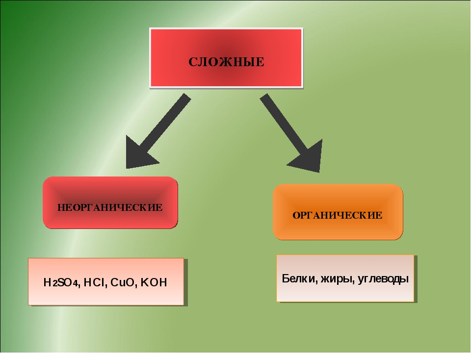НЕОРГАНИЧЕСКИЕ ОРГАНИЧЕСКИЕ H2SO4, HCl, CuO, KOH Белки, жиры, углеводы