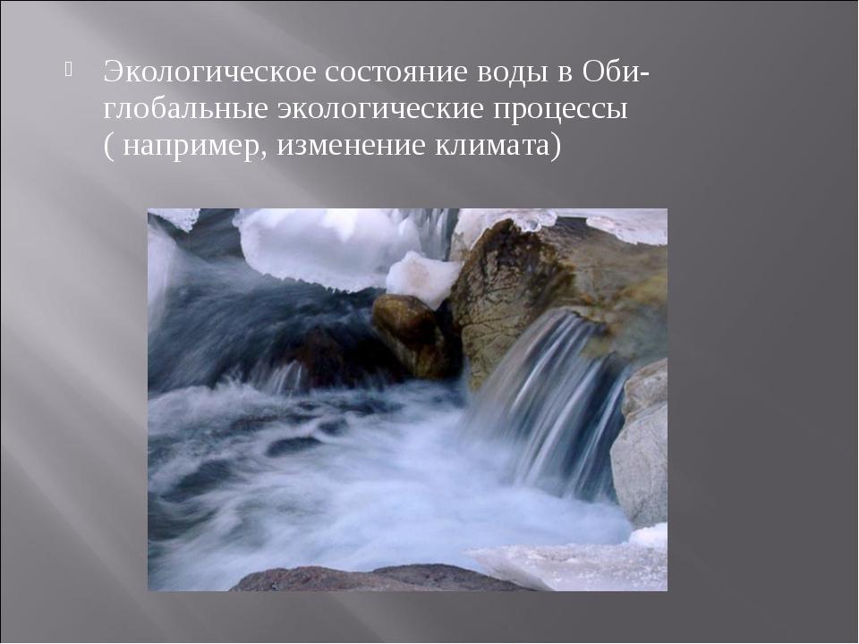 Экологическое состояние воды в Оби- глобальные экологические процессы ( напри...