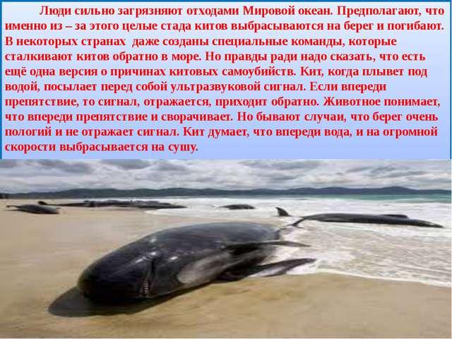 Люди сильно загрязняют отходами Мировой океан. Предполагают, что именно из –...