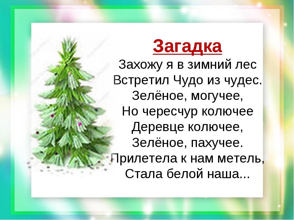 Загадка Захожу я в зимний лес Встретил Чудо из чудес. Зелёное, могучее, Но ч...