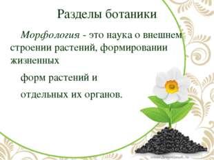 Разделы ботаники Морфология- это наука о внешнем строении растений, формиро