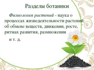 Разделы ботаники Физиология растений- наука о процессах жизнедеятельности р
