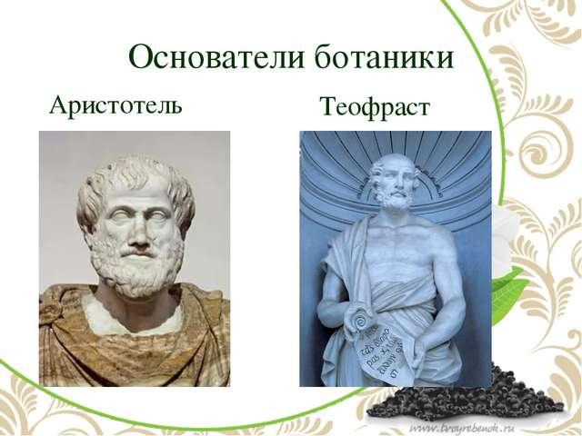 Основатели ботаники Аристотель Теофраст
