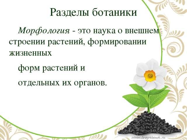 Разделы ботаники Морфология- это наука о внешнем строении растений, формиро...