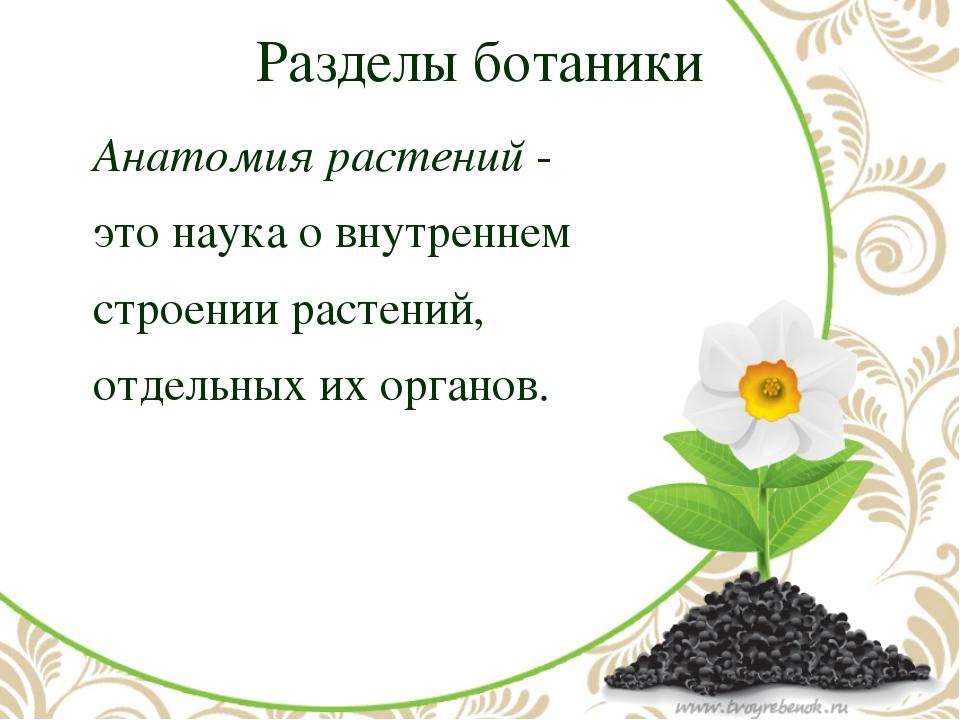 Разделы ботаники Анатомия растений- это наука о внутреннем строении расте...