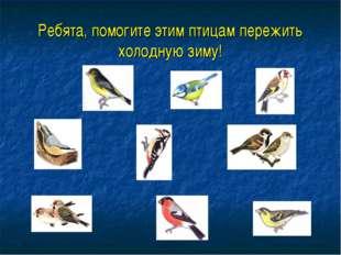 Ребята, помогите этим птицам пережить холодную зиму!