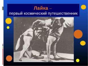 Лайка – первый космический путешественник