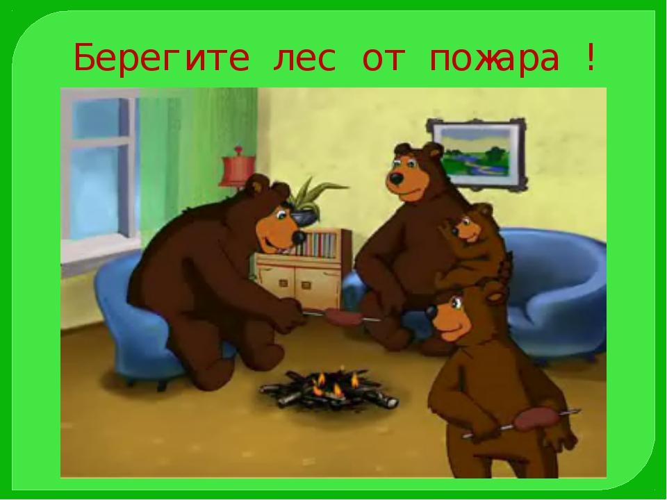 Берегите лес от пожара !