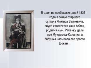 В один из ноябрьских дней 1835 года в семье старшего султана Чингиса Валиеви