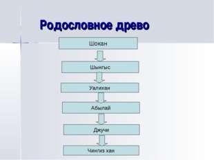 Родословное древо Шокан Шынгыс Уалихан Абылай Джучи Чингиз хан