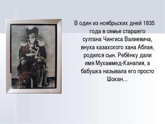 В один из ноябрьских дней 1835 года в семье старшего султана Чингиса Валиеви...