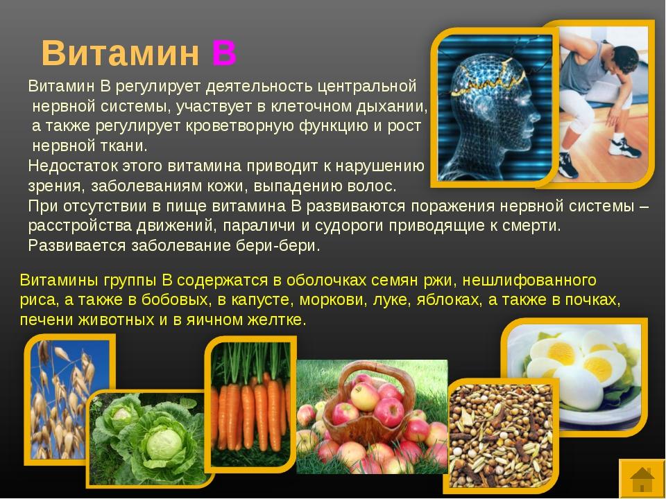 Витамин В Витамин В регулирует деятельность центральной нервной системы, учас...