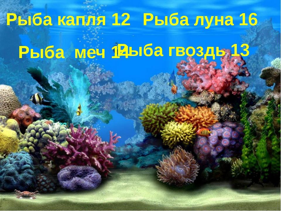 Рыба капля 12 Рыба луна 16 Рыба меч 14 Рыба гвоздь 13