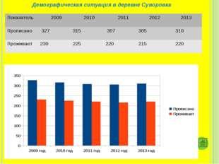 Демографическая ситуация в деревне Суворовка Показатель 2009 2010 2011 20