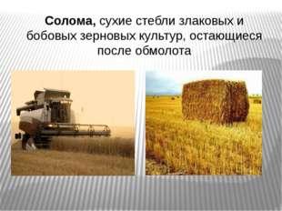 Солома, сухие стебли злаковых и бобовых зерновых культур, остающиеся после о