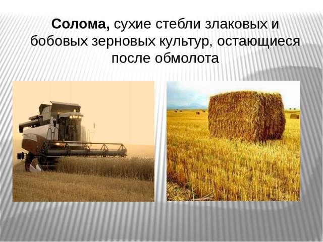 Солома, сухие стебли злаковых и бобовых зерновых культур, остающиеся после о...