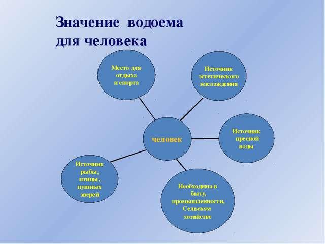 Значение водоема для человека Источник рыбы, птицы, пушных зверей Источник пр...
