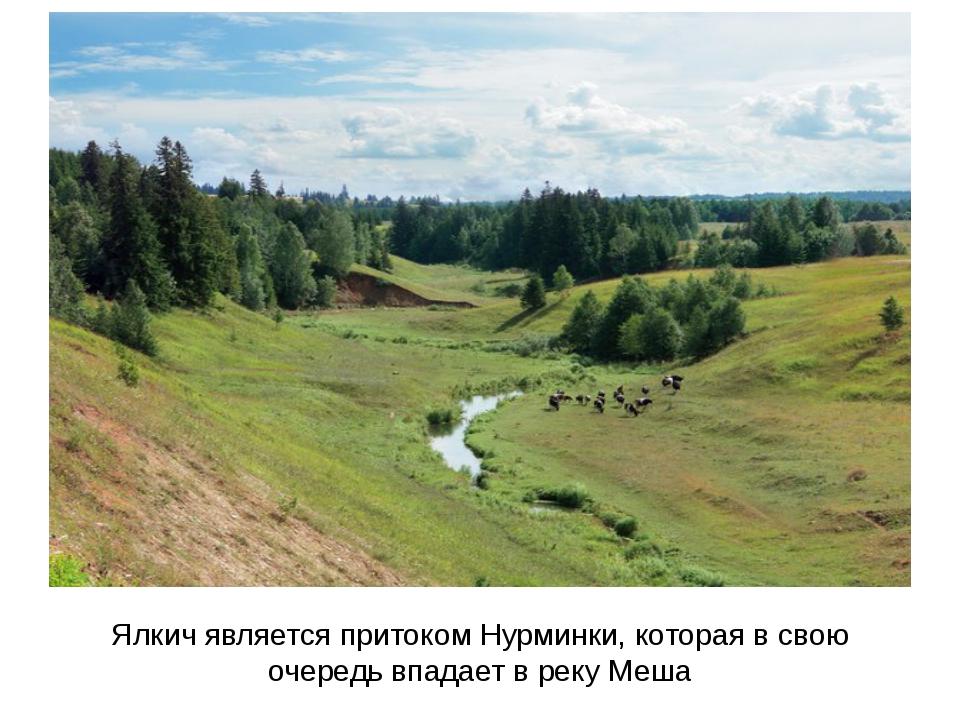Ялкич является притоком Нурминки, которая в свою очередь впадает в реку Меша