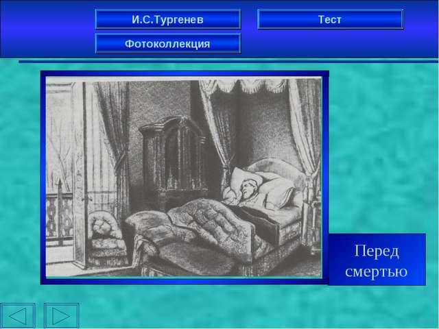 И.С.Тургенев Фотоколлекция Тест Перед смертью