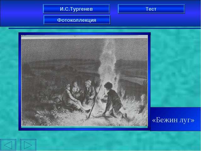 И.С.Тургенев Фотоколлекция Тест «Бежин луг»