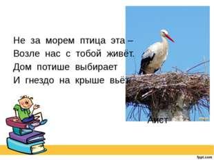 Не за морем птица эта – Возле нас с тобой живёт. Дом потише выбирает И гнезд
