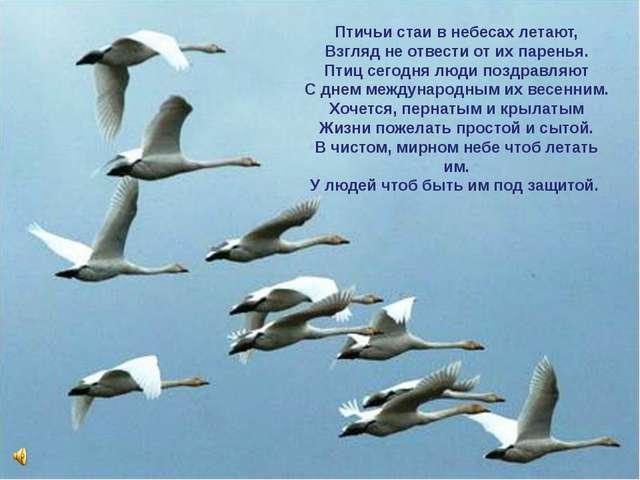Птичьи стаи в небесах летают, Взгляд не отвести от их паренья. Птиц сегодня л...