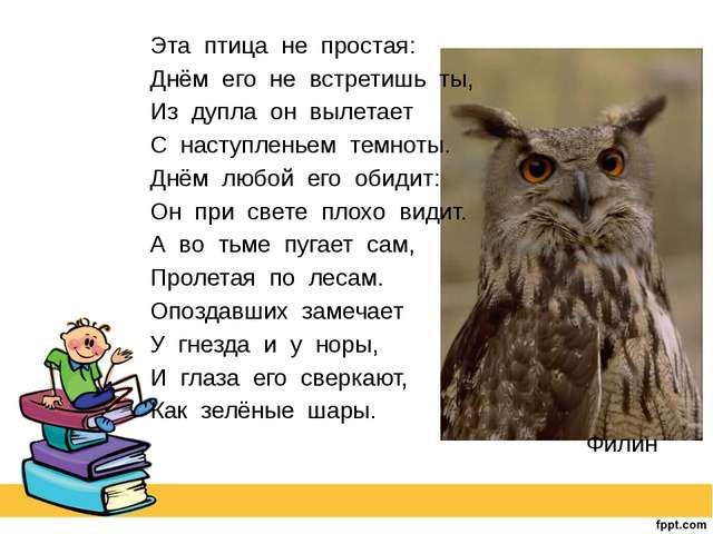 Эта птица не простая: Днём его не встретишь ты, Из дупла он вылетает С наступ...
