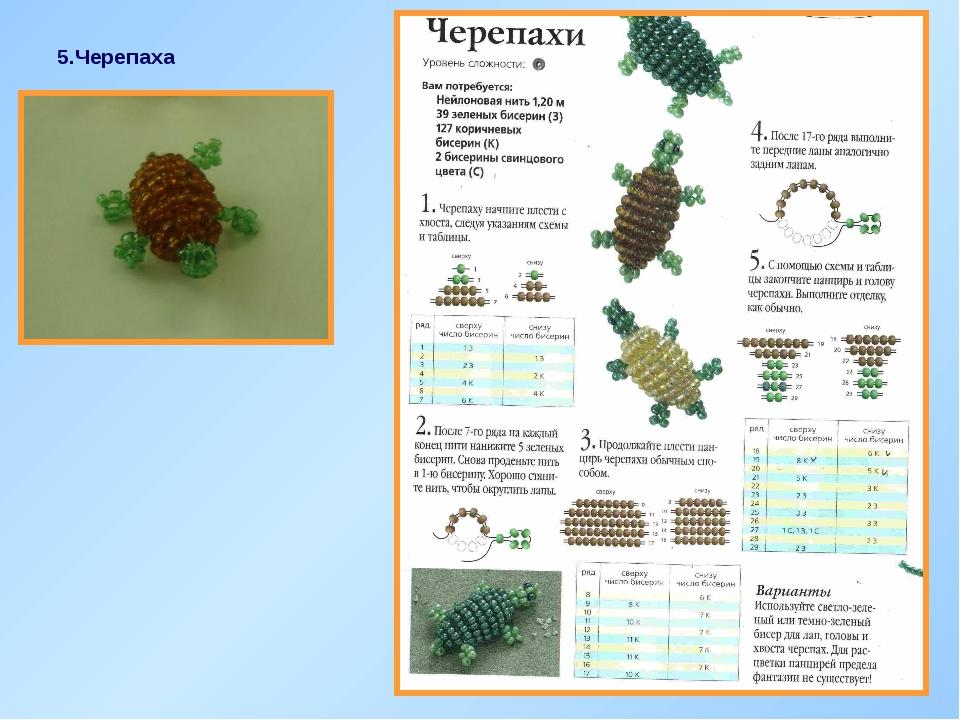 5.Черепаха