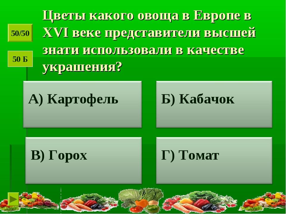 Цветы какого овоща в Европе в XVI веке представители высшей знати использовал...