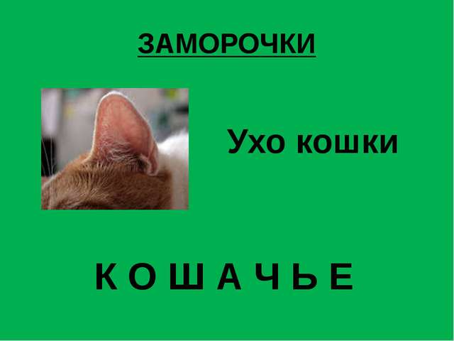 ЗАМОРОЧКИ Ухо кошки К О Ш А Ч Ь Е