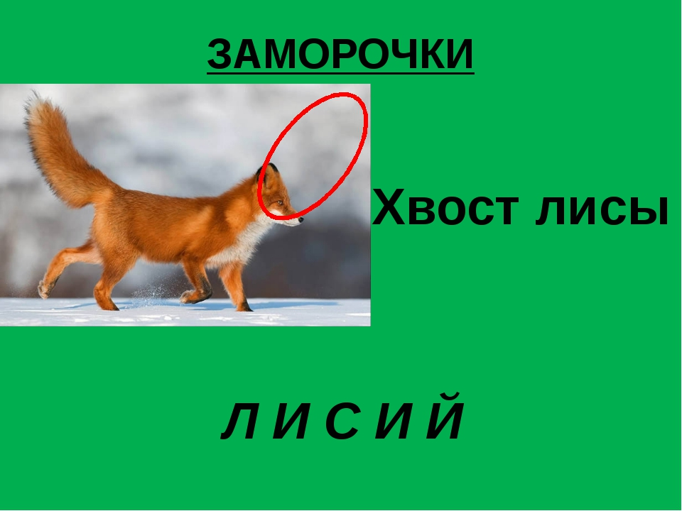 ЗАМОРОЧКИ  Хвост лисы Л И С И Й