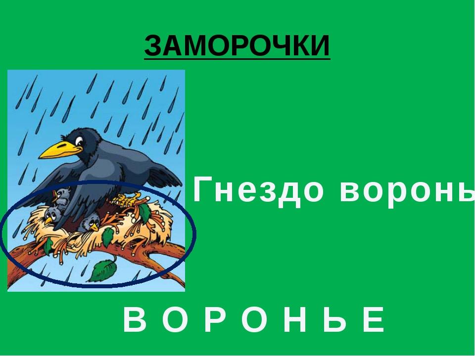 ЗАМОРОЧКИ Гнездо вороны В О Р О Н Ь Е