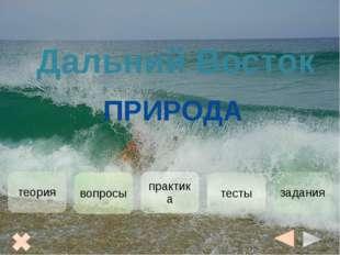 Дальний Восток- это район землетрясений и цунами, то есть сейсмическая зона,