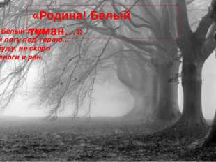 Родина! Белый туман В черном логу под горою… Не позабуду, не скоро Боли, трев