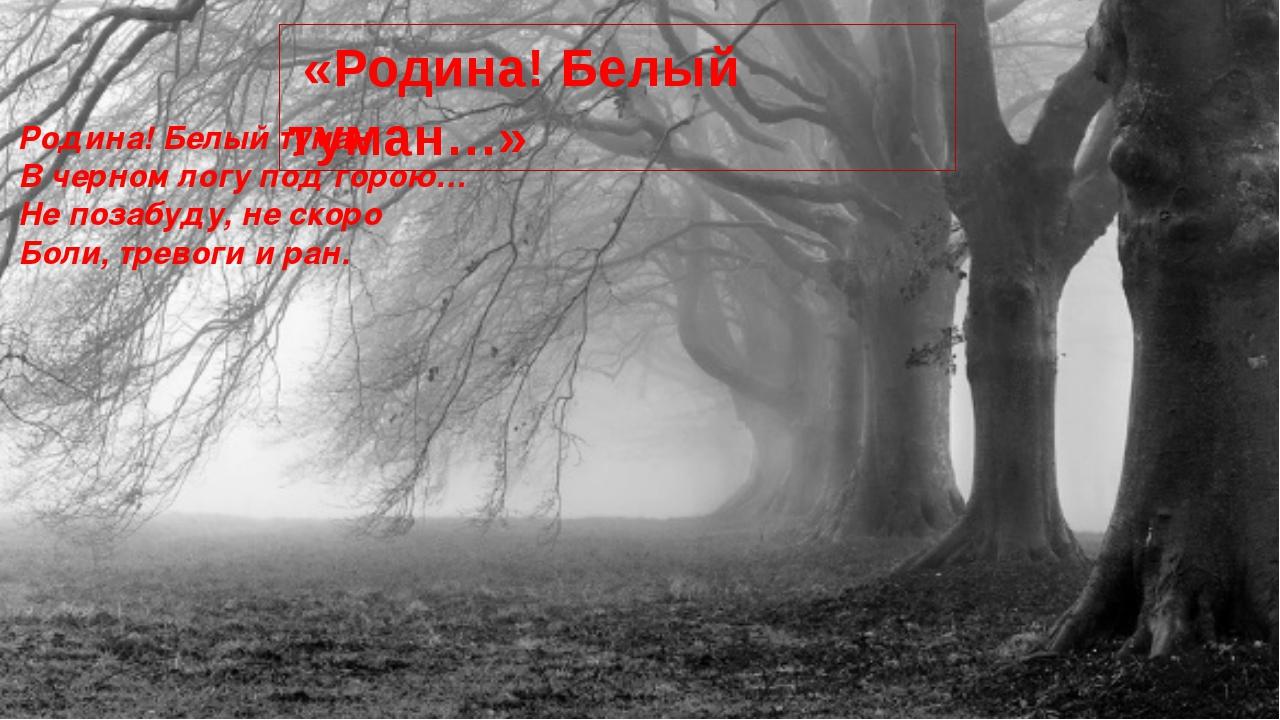 Родина! Белый туман В черном логу под горою… Не позабуду, не скоро Боли, трев...