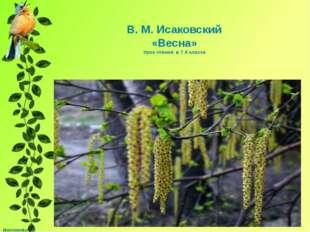 В. М. Исаковский «Весна» Урок чтения в 7 б классе