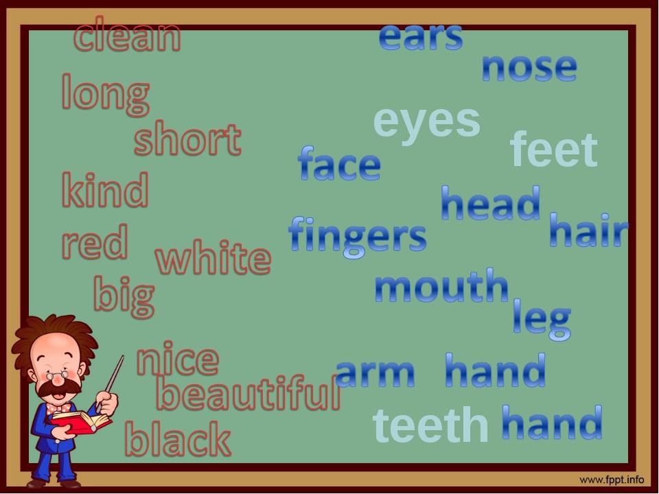 eyes teeth feet