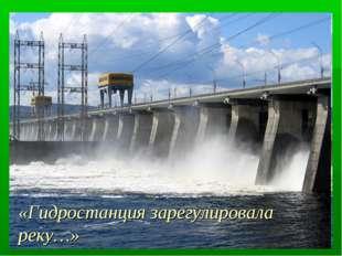 «Гидростанция зарегулировала реку…»