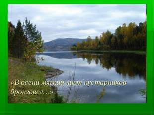 «В осени мягкий лист кустарников бронзовел…»