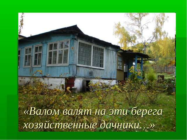 «Валом валят на эти берега хозяйственные дачники…»