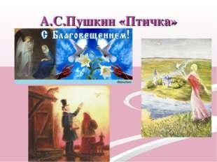 А.С.Пушкин «Птичка»