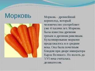 Морковь Морковь - древнейший корнеплод, который человечество употребляет уже