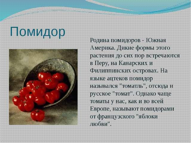 Помидор Родина помидоров - Южная Америка. Дикие формы этого растения до сих п...