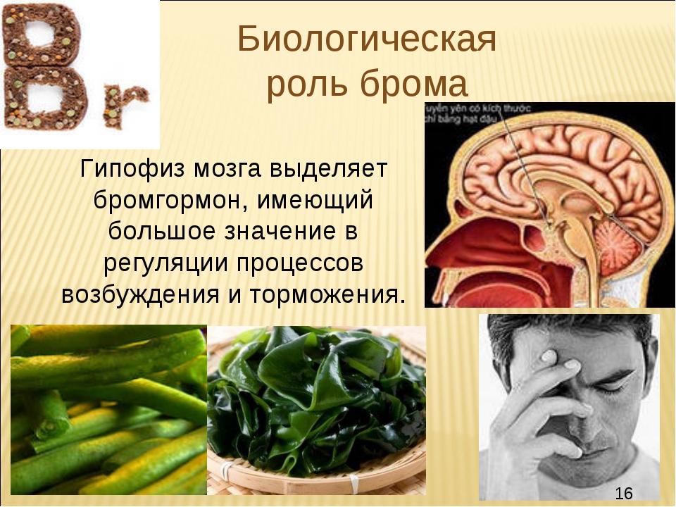 Биологическая роль брома Гипофиз мозга выделяет бромгормон, имеющий большое з...