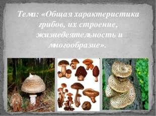 Тема: «Общая характеристика грибов, их строение, жизнедеятельность и многооб
