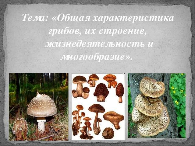 Тема: «Общая характеристика грибов, их строение, жизнедеятельность и многооб...