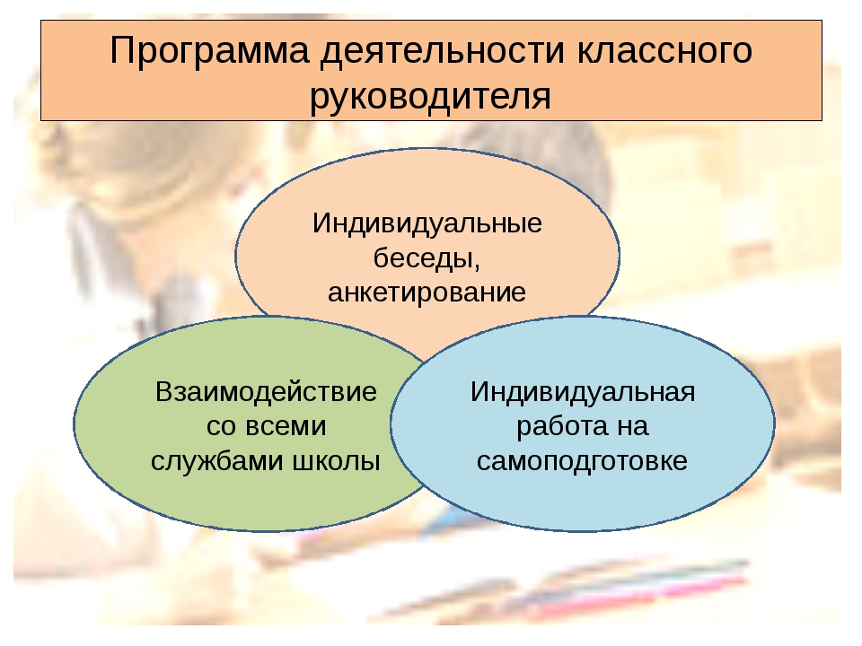 Программа деятельности классного руководителя Индивидуальные беседы, анкетиро...