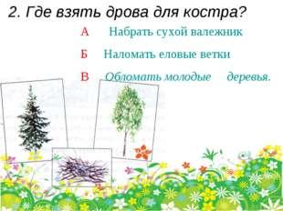2. Где взять дрова для костра? А Набрать сухой валежник Б Наломать еловые вет