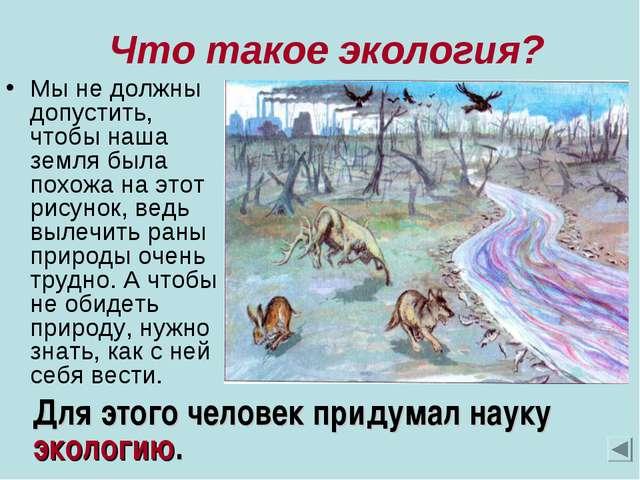 Что такое экология? Мы не должны допустить, чтобы наша земля была похожа на...